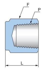 Заглушка с внутренней резьбой PCP - Эскиз